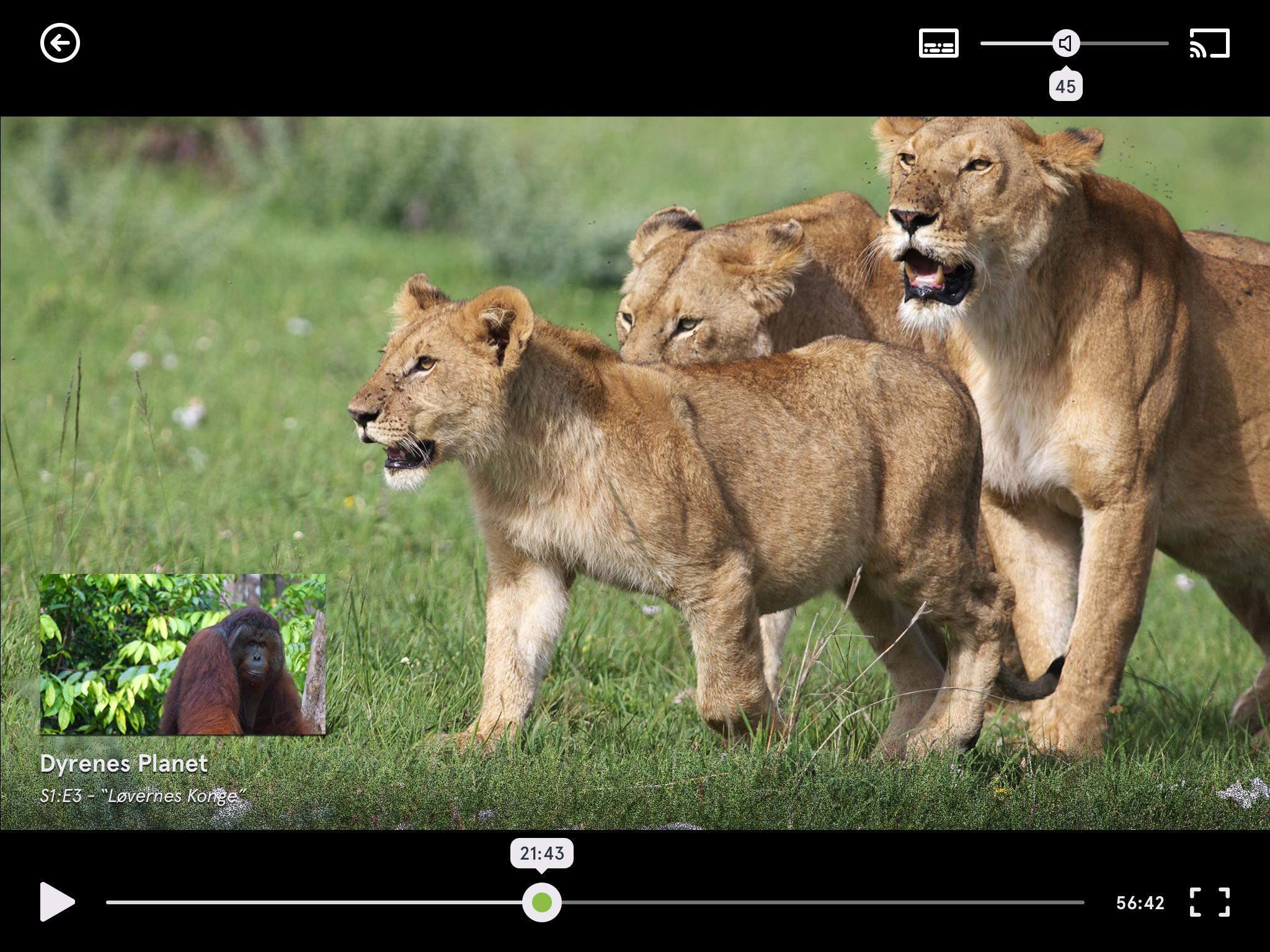 Afspiller-Fullscreen